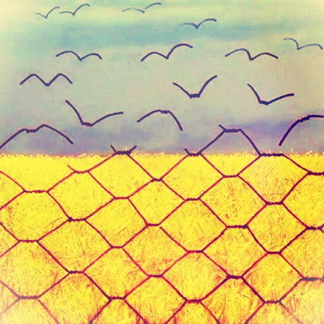 ukr-flag-fence