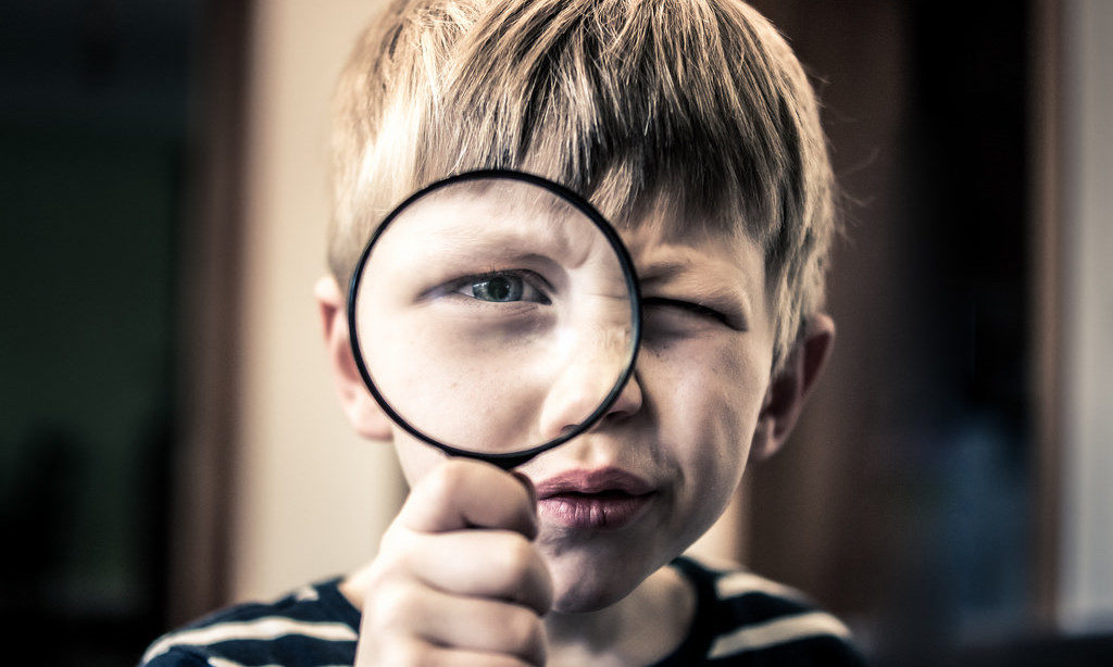 best-magnifying-glass-options-1024x614